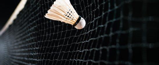 A shuttlecock hits a badminton net
