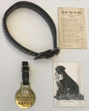 What's Changed? 11. Objects relating to Mac the Dog, including his collar and Merit Medal from the RSPCA, 1920s