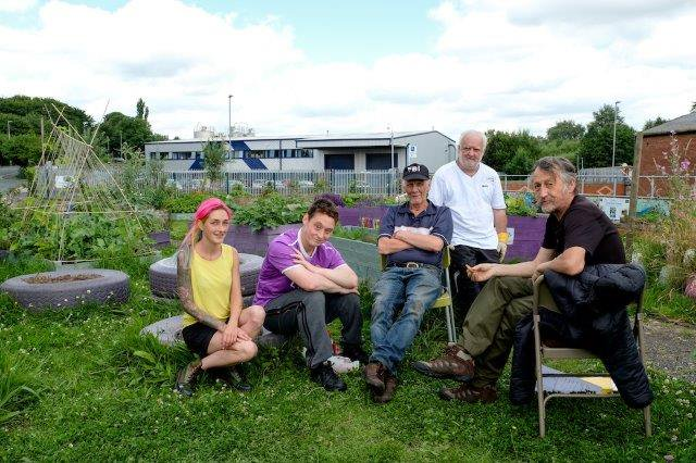 Local biodiversity projects receive donations from sales of knitted bees: Petrus PIER group